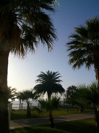 Club Tarhan Beach Hotel 사진
