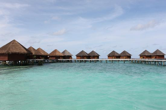 Mirihi Island Resort: Water Villa