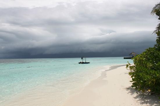 Mirihi Island Resort: Beach