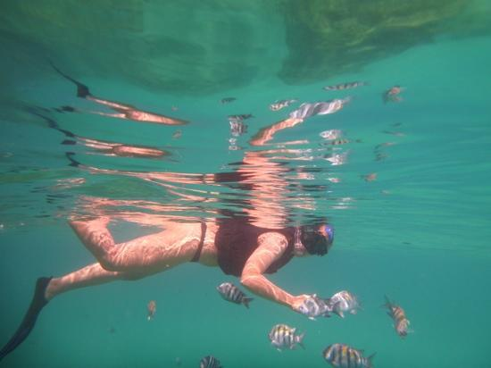 Baia do Sancho: snorkel