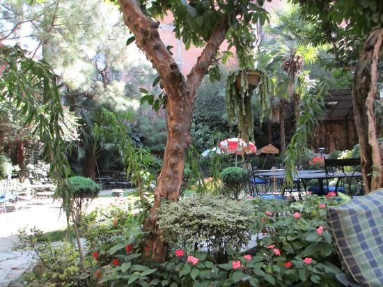 Nirvana Garden Hotel: Beautiful Garden