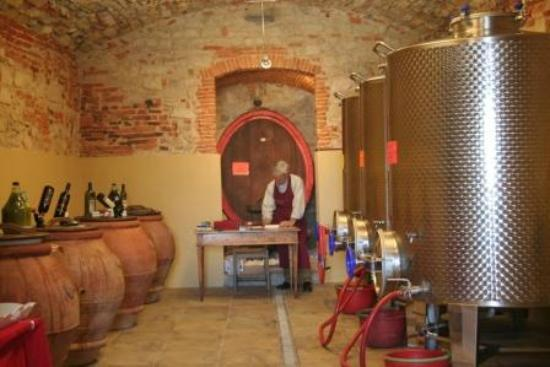 Castello di Volognano: WINERY