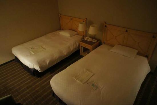 Hotel Nikko Osaka: Twin bed