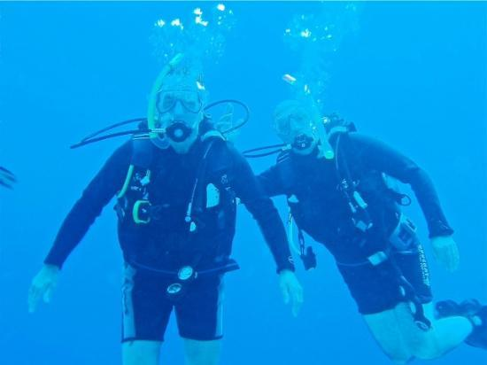 Dive Urge: Happy buddies!