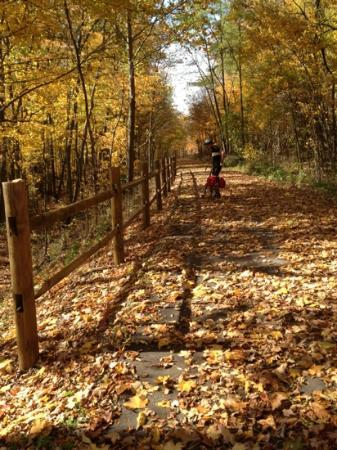 Cardinal Greenway: Trail near Richmond heading north.