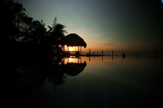 Kebun Impian: sunrise
