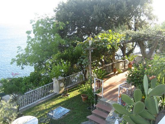 La Maliosa d'Arienzo: Trägården