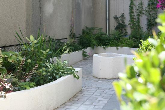 Foto de The Secret Garden Hostel