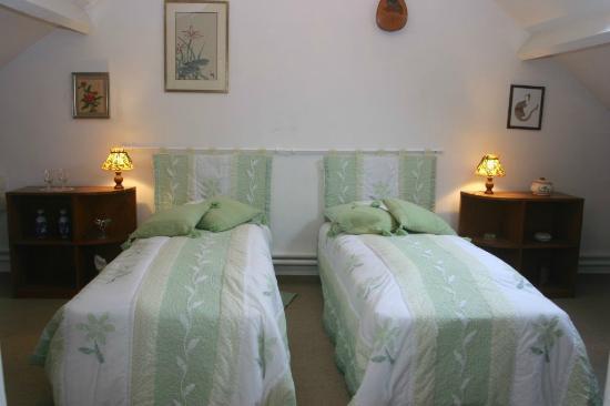 Les Camelias: Chambre verte de la Suite