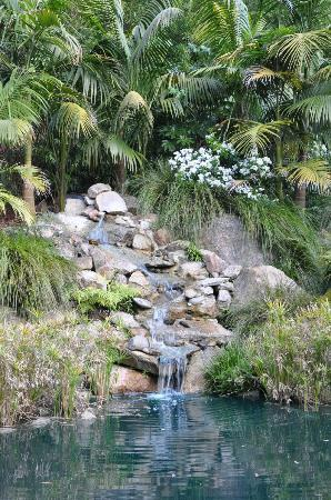 Balinese Retreat: Waterfall to wake up to....
