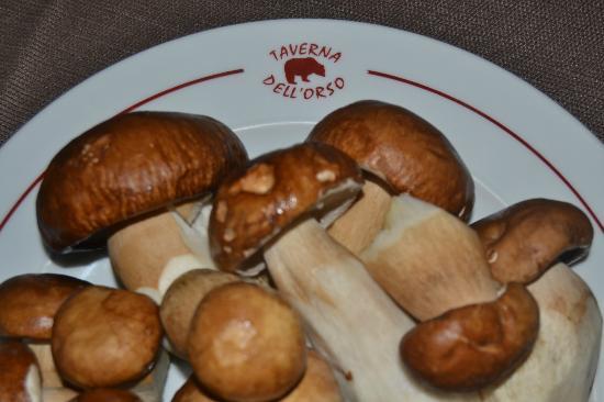 Taverna dell'Orso : Porcini freschi