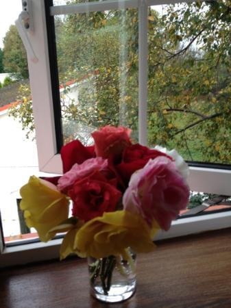 Mystical Rose Bed and Breakfast: Our fresh roses from Noreen