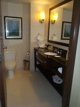 Hilton Asheville Biltmore Park: Bathroom