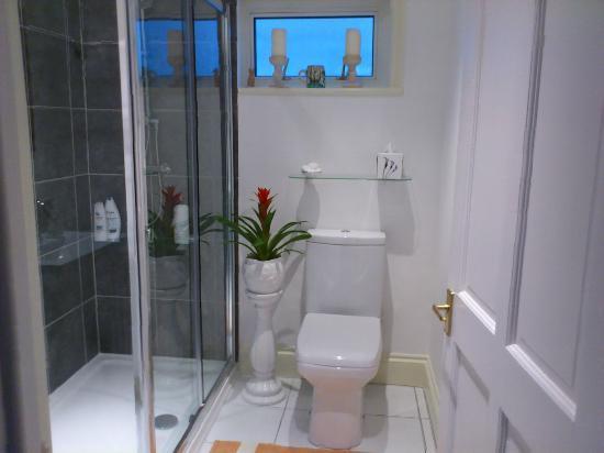 Birds Bed & Breakfast: Stylish bathroom.