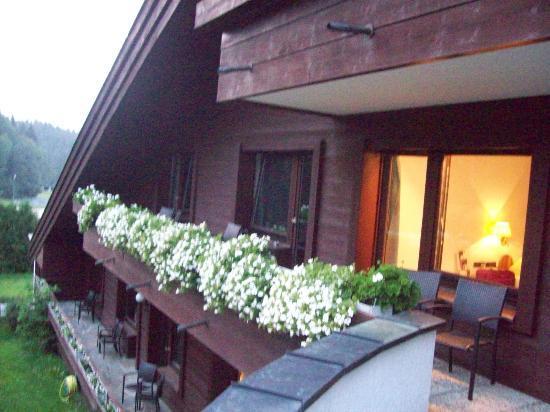 Hotel Römerhof: CAMERA VISTA DAL TERRAZZO ESTERNO