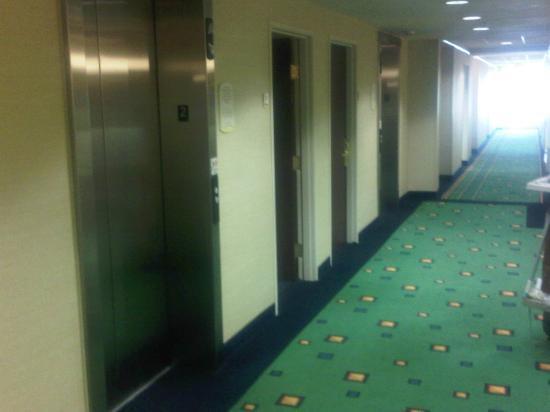 SpringHill Suites West Mifflin: Elevator,Room 217, Room 219, Elevator