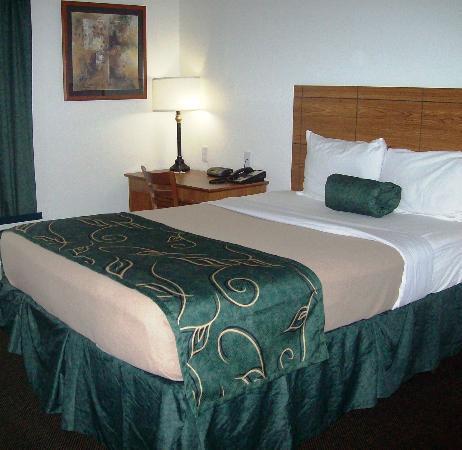 Baymont Inn & Suites Dexter: Guest Room