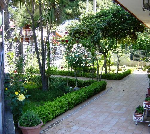 B b la giara nicolosi giardino d 39 ingresso picture of - Ingresso giardino ...