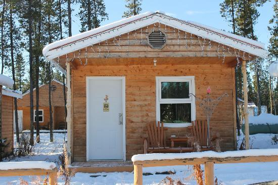 Nugget City : The cabin