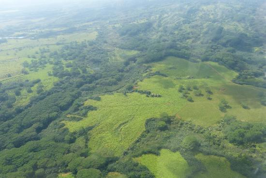 Wings Over Kauai Air Tour: Green flatlands