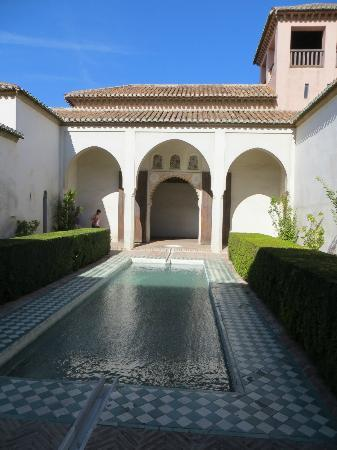 Alcazaba: patio