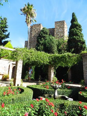 Alcazaba (exteriour and garden)