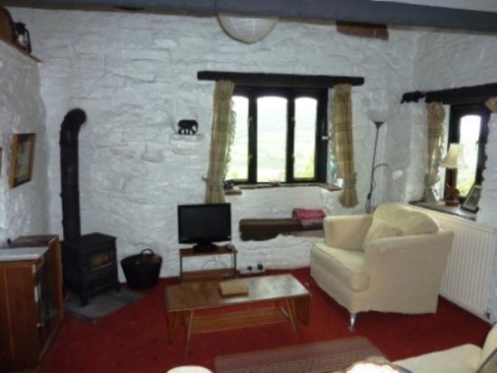 Shepherds Cottage & Maes-y-deri at Tyn-y-bryn: lounge