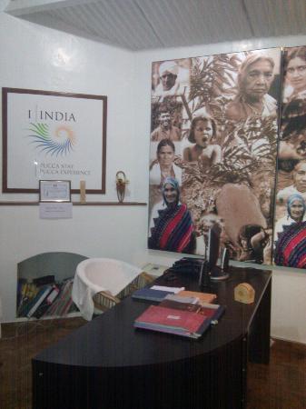 I-India: Reception