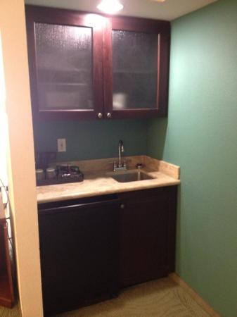 SpringHill Suites by Marriott Tampa Westshore Airport: kitchenette