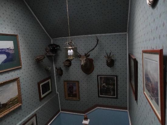 wierd kinkell house