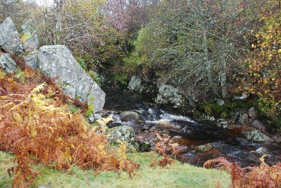 Cheviot Holiday Cottages: Beauty of the area - Linhope Spout