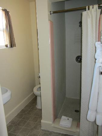 Dixie Palms Motel: Shower and bathroom view