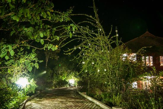 Ayurveda Yoga Villa: AYV at night