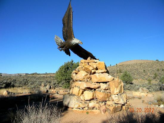 Dennis Weaver Memorial Park: Bald eagle