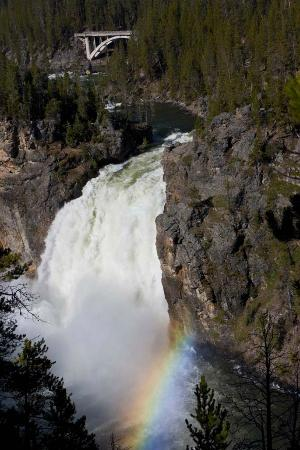 Grand Canyon of the Yellowstone: Rainbow at Upper falls 2011 trip