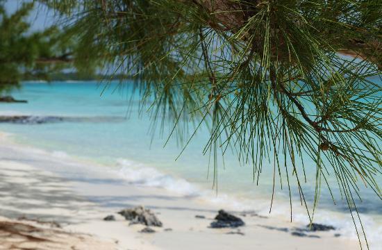 Pigeon Cay Beach Club : strand