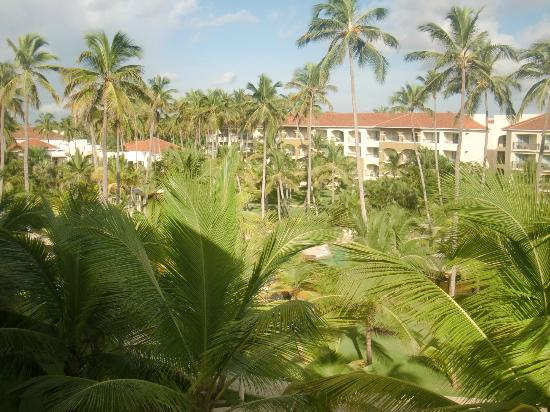 Beds Picture Of Now Larimar Punta Cana Bavaro Tripadvisor