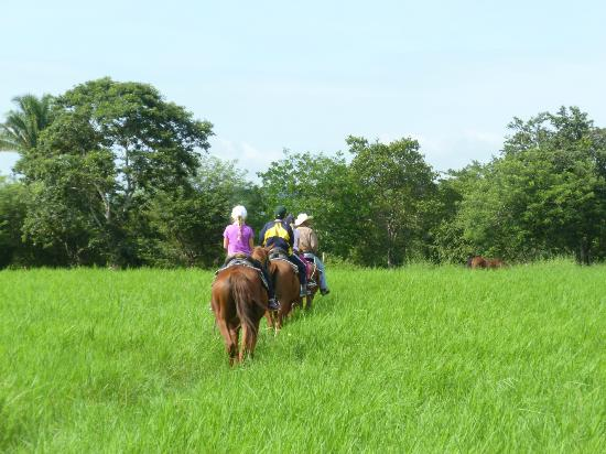 Hanna Stables: Amazing views on the way to Xunantunich