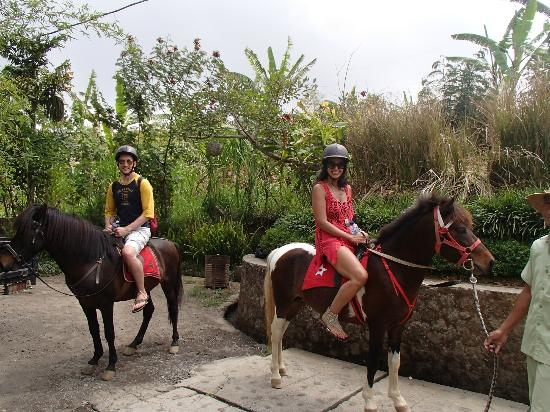 Munduk Moding Plantation: Horseback Riding