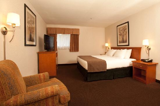 Quality Inn & Suites Hotel: Executive King Suite