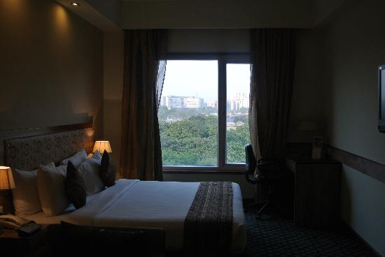 Quality Inn Bliss: Room's view of the greenery