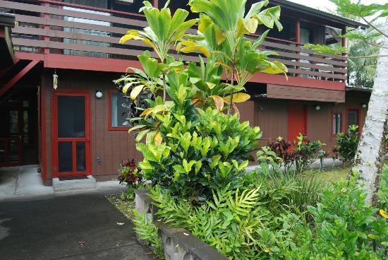 Hale Moana Bed & Breakfast: Garden Lanai