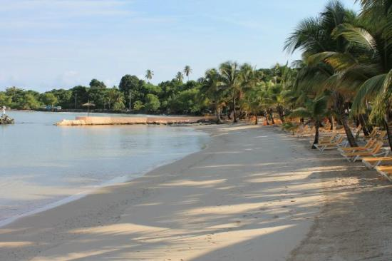 Coco Reef Tobago: Ist das ein Traumstrand :-) :-)