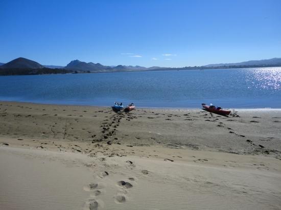 Central Coast Outdoors: Kayacking Morro bay