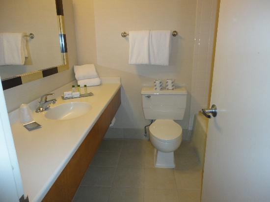 Doubletree By Hilton at the Entrance to Universal Orlando: Bathroom