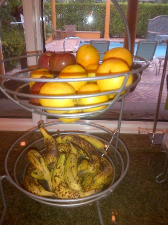Hampton Inn West Palm Beach-Lake Worth-Turnpike : Oh those bananas, day after day!