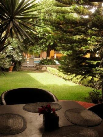 Hotel El Naranjo Bed&Breakfast: Vista desde el comedor