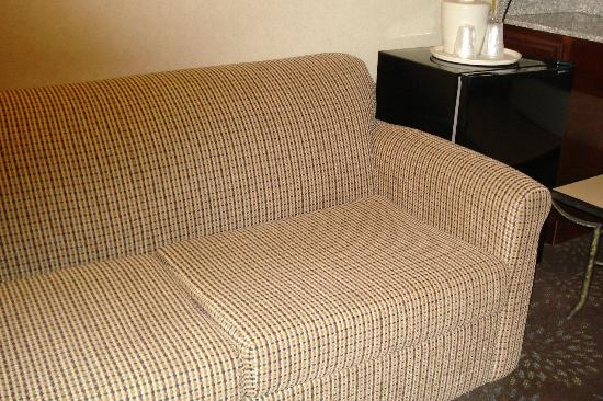 Holiday Inn Express Woodhaven: omfortable sofa