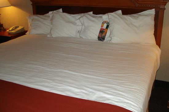 Holiday Inn Express Woodhaven : Nice sheets