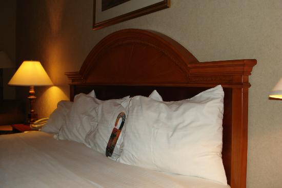 Holiday Inn Express Woodhaven : Beautiful headboard
